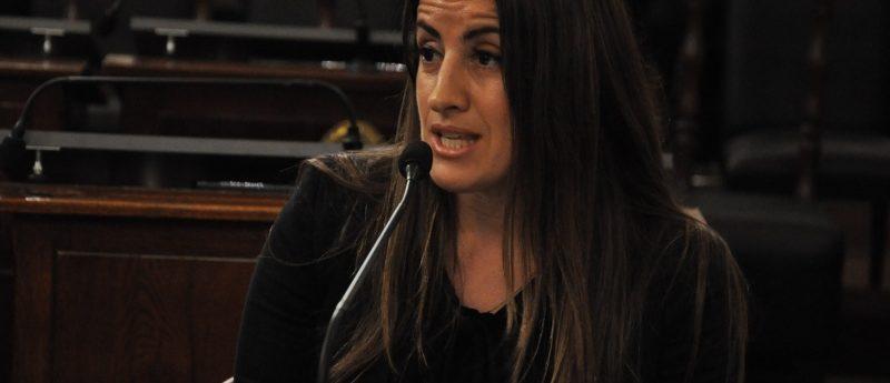 Montefiori atravesó sin sobresaltos la audiencia pública